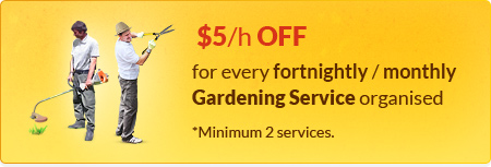 $5/h Off For Every Fortnightly Or Monthly Gardening Service Organised